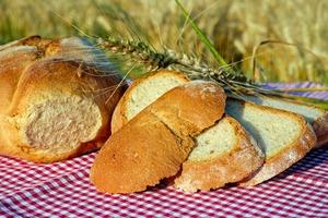 減肥應否戒食麵包?中醫拆解麵包健康6大迷思